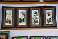 蝴蝶标本拼图梅兰竹菊