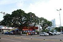 在十字交通旁的宝真购物广场
