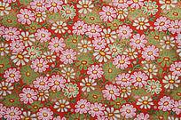 绿红菊花   菊花花纹