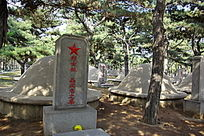 烈士林晶之墓