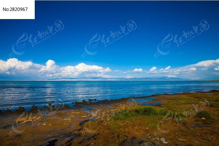青海湖边图片