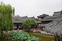 十笏园园林景观之垂柳与池塘