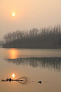 夕阳下安逸在湖面的枯树