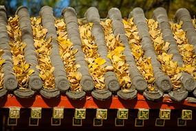 落满枯黄树叶的寺庙房顶