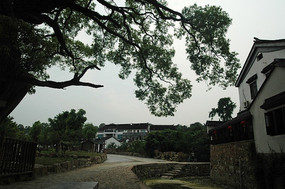 苏州明月村的美丽景色