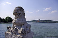 精美的石雕狮子