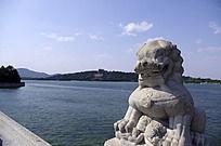 十七孔桥的石狮子