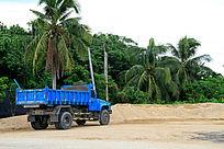 椰树下的大货车