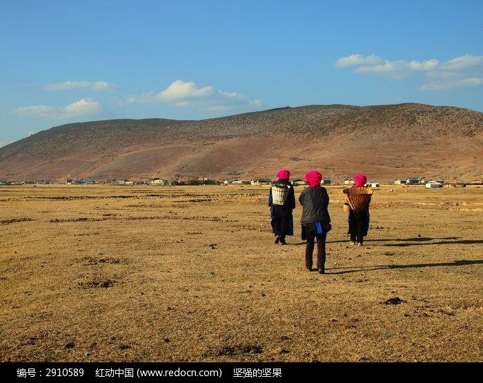 依拉草原的女人图片