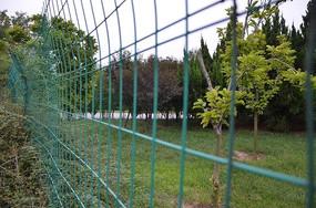 弥河公园铁丝篱笆