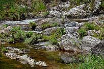 梁野山的小河流
