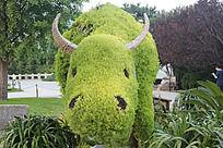 植物园—萌萌哒  植物造型的牛