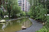 小区绿化小河流