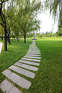 绿草间的小路