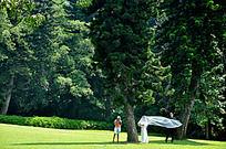绿草坪上拍婚纱照的人