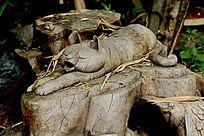 木雕的懒猫