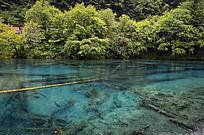 九寨沟的蓝色湖泊