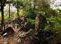 柏溪燕山上的岩石