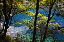 树正群海的蓝色湖泊