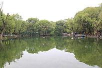 公园湖水倒影