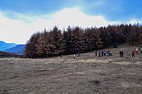 兴隆山树林边的游客