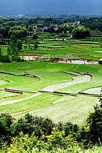 黟县金家岭的山水风景
