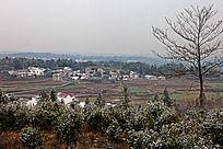 黟县西武官路村落