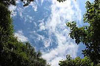 天空  白云