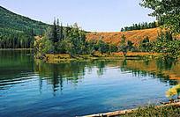 湖泊上的树林