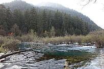 森林群抱清澈湖水