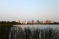美丽的焦作龙源湖公园