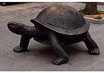 摆放在地下的铜质乌龟雕塑