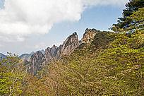 秋黄山 自然风光