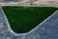 三角形草地