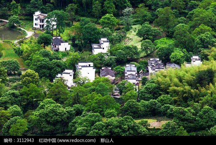 黟县协理的生态环境图片