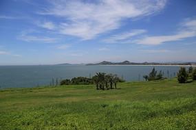 蓝天白云海洋草地