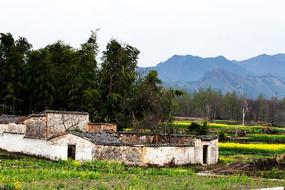 黟县卢村民居庭院