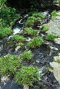 搁船尖的绿草清溪