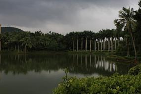 乌云椰树江河相接的自然美景