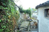 村落农家小院外景