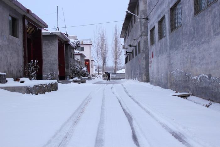雪地里的车道图片
