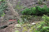 武夷山大红袍产地