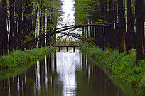 小桥流水图片