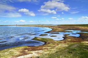 草原上湖边的草地