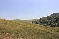蓝天下的草原风光