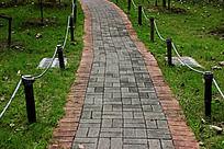 绿色的草地和灰色的砖块铺成的小路