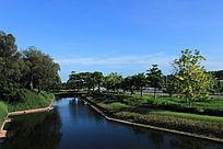 公园园艺绿化