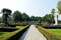 八里河风景区整齐的植被
