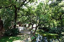 婺源晓起村的水口园林自然风光