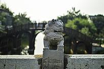 桥上的石狮子